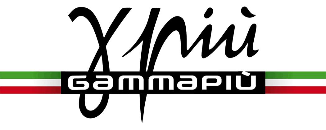Логотип компании Gamma Piu